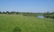 Продаются участи населенных пунктов под Поместье в д. Федотково (50сот-2га) Смоленская область